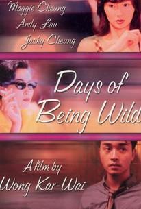 Days Of Being Wild A Fei Zheng Chuan 1990