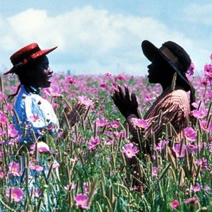 The Color Purple 1985 Rotten Tomatoes