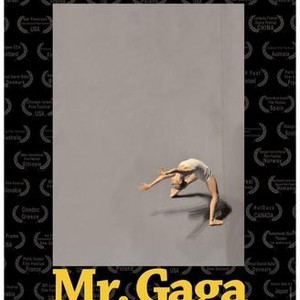 Mr gaga a true story of love and dance 2017 rotten tomatoes