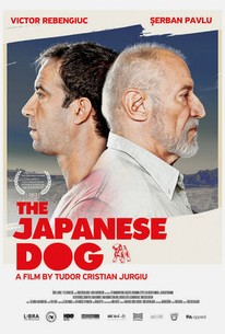 Câinele Japonez (The Japanese Dog)