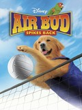 Air Bud 5 - Spikes Back