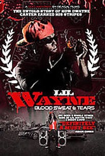 Lil Wayne - Blood, Sweat and Tears