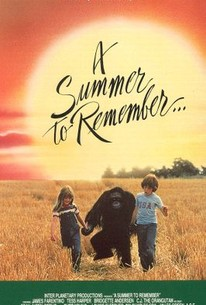 A Summer to Remember...