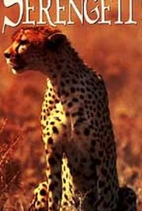 Tales of the Serengeti - The Cheetah's Tale