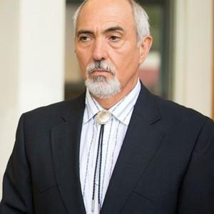 Miguel Sandoval as Judge Hernandez