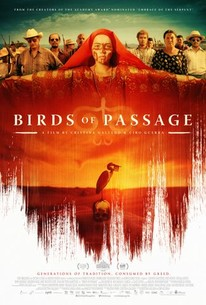 Halloween 2020 Torrentking Birds of Passage (Pájaros de verano) (2019)   Rotten Tomatoes