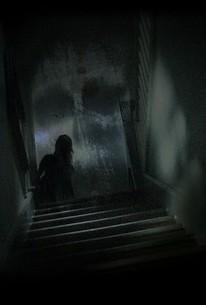 Paranormal Witness Kinox