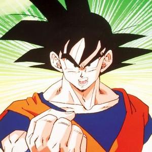 Goku is voiced by Sean Schemmel