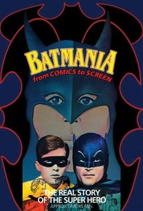 Holy Batmania!