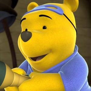 Winnie the Pooh is voiced by Jim Cummings