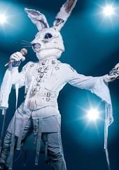 The Masked Singer: Season 1