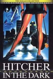 Paura nel Buio (Fear in the Dark) (Hitcher in the Dark )