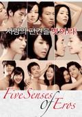 Five Senses Of Eros (Ogamdo)