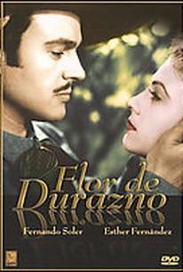 Flor De Durazno