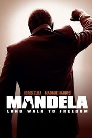 Mandela: Long Walk to Freedom (2013)