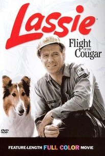 Flight of the Cougar