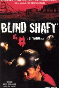 Blind Shaft