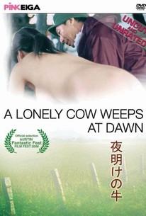 Chikan gifu: Musuko no yome to... (A Lonely Cow Weeps at Dawn)