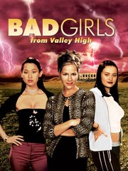 The Bad Girls From Valley High