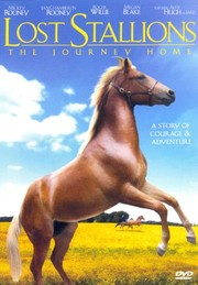 Lost Stallions: The Journey Home
