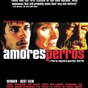 amores perros critical essay Camila (bemberg, 1984)  says a lot about its hidden characteristics in the above mentioned critical essay regarding bemberg's work,.
