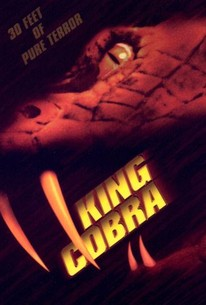 King Cobra 2001 Rotten Tomatoes