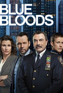 watch blue bloods season 5 online free