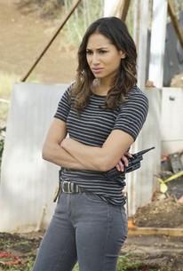 Hawaii Five-0 - Season 8 Episode 16 - Rotten Tomatoes
