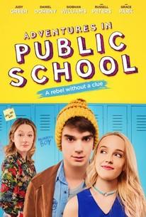 Adventures in Public School (Public Schooled)