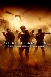 Seal Team 6: The Raid on Osama Bin Laden - Movie Reviews