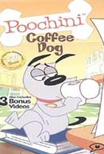 Poochini: Coffee Dog
