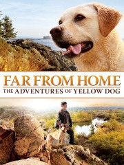 Far From Home - The Adventures Of Yellow Dog