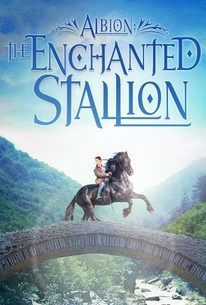 The Enchanted Stallion