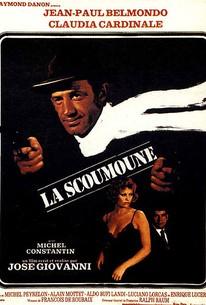 La Scoumoune (Hit Man)(Mafia Warfare)(The Pariah)