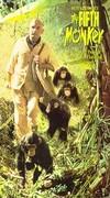 O Quinto Macaco