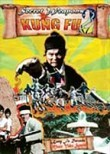 Secret Weapons of Kung Fu 2
